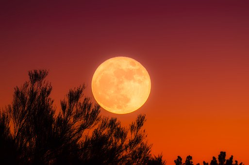 HARVEST FULL MOON IN PISCES – EMOTION VS LOGIC