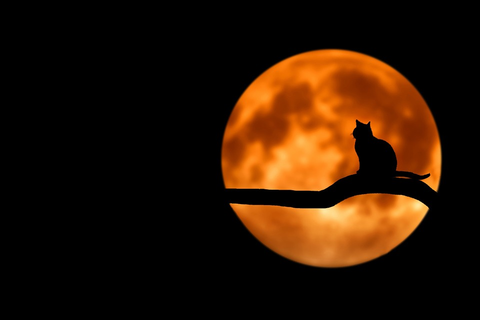 FULL MOON IN ARIES, SUN IN LIBRA AND THE EQUINOX – PASSION, HARMONY AND YOUR SIX MONTH PLAN