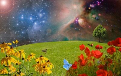 NEW MOON IN VIRGO – EMBRACING WHAT IS REAL
